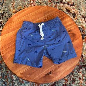 Carter's Boys Dino Shorts